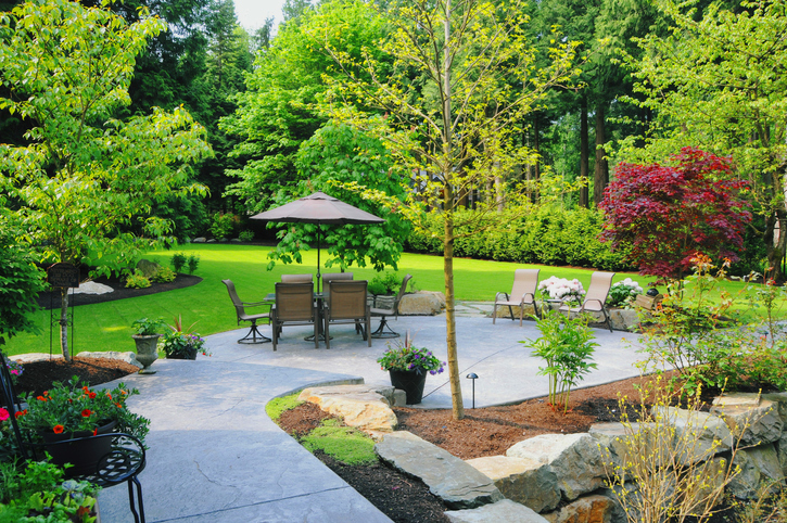Landscaped Back Yard